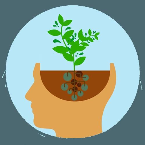 هل قواك العقلية نامية أم ثابتة قواك العقلية من الذكاء والذاكرة والانتباه زيادة النشاط والعمل الدؤوب امتلاك عقلية نامية هل الذكاء يتزداد مع الزمن