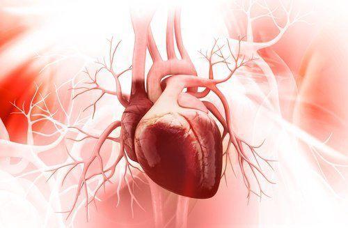 ما هي ظاهرة القلب العملاق؟ وكيف تحدث؟