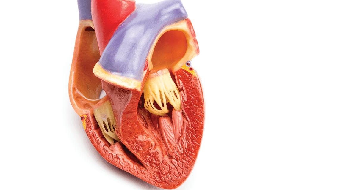 التهاب غشاء التامور Pericarditis