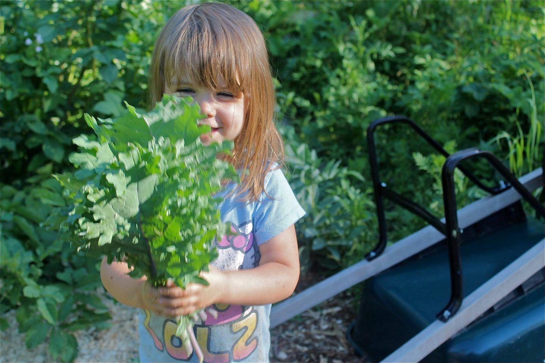 دعوا اولادكم يلعبون خارج المنزل للحفاظ على البيئة