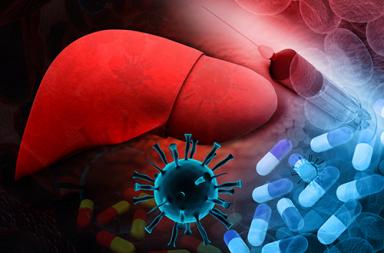 التهاب الكبد B: الأسباب والأعراض والتشخيص والعلاج التهاب الكبد الوبائي تليف الكبد سرطان الكبد أعراض إصابة الكبد بالأمراض كيفية انتقال الفيروس