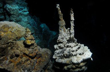 قام العلماء بتنمية شكل حياة غامضة يمكن أن تكشف عن أصول الحياة المعقدة الحمض النووي DNA فتحات حرارية مائية نشطة في المحيط الأطلسي الميكروبات