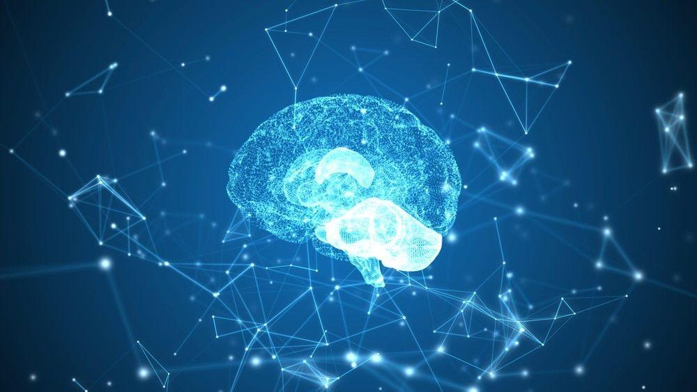 الذاكرة: كيف تتشكل الذكريات في الدماغ