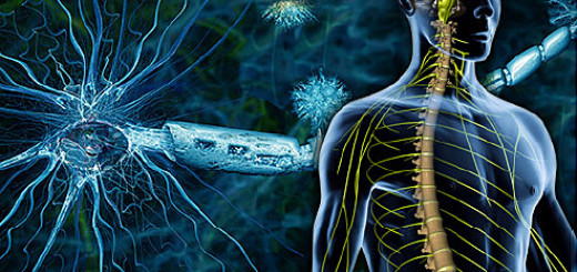 ما هو التصلب اللويحي Multiple Sclerosis ؟