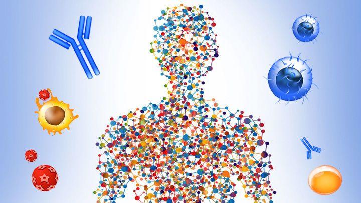 ما هو علم أنظمة الأحياء ؟