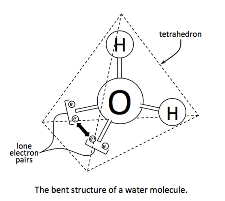 التركيب الهرمي رباعي الأسطح لجزيء الماء في الحالة السائلة