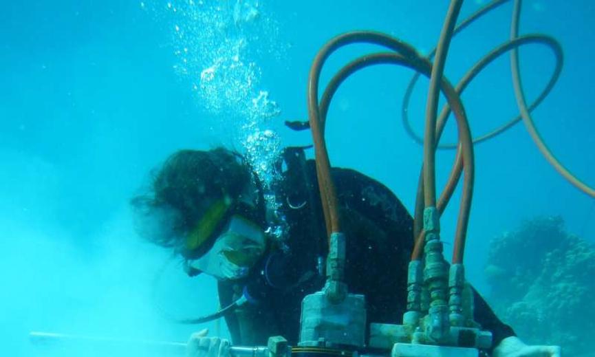 الأستاذ في معهد جورجيا للتكنولوجيا كيم كوب في معدات الغوص، تستخدم مثقابًا هوائيًّا لأخذ عينات من مرجان المحيط الهادي، لدراسة درجات حرارة سطح البحر قديمًا وحديثًا