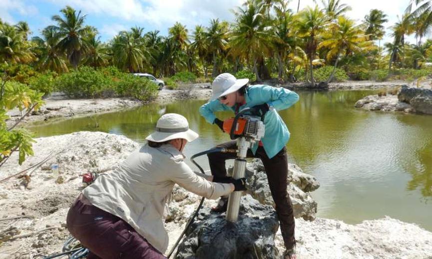 بام جروث وأليسا أتوود تنقبان في حفرية مرجانية عمرها 5000 عام في جزيرة Kiritimati بالمحيط الهادي