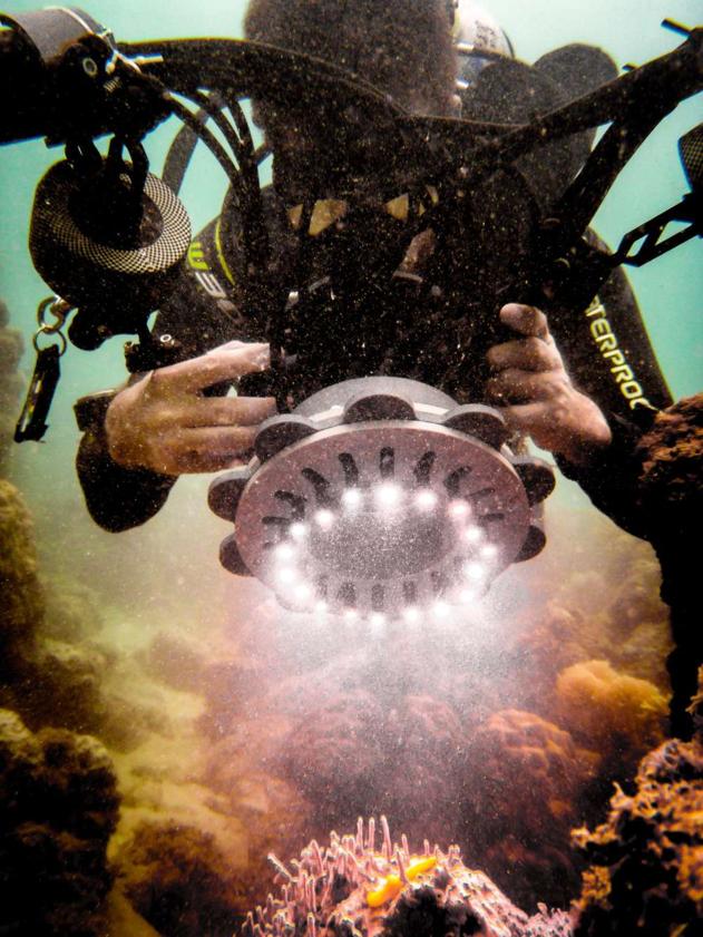 يستخدم فان دن برغ نظام كاميرا مبدئي لرؤية الخروقات في جزيرة ليزارد