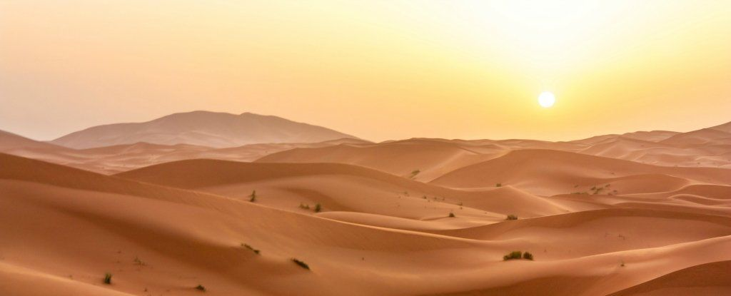 الصحراء الكبرى زادت مساحتها 10% وهذا ما عليك أن تعرفه