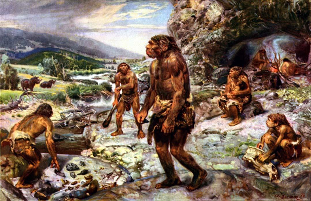 كيف استأنس البشر نفسهم؟ أخيرًا وجدنا الدليل!