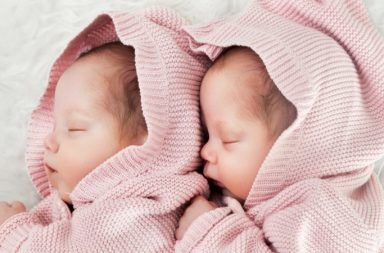 انخفاض معدل التوائم في الولايات المتحدة نتيجة تطور تقنيات الإخصاب ازدياد نسبة الولادات الفردية المركز الأمريكي للسيطرة على الأمراض والوقاية منها