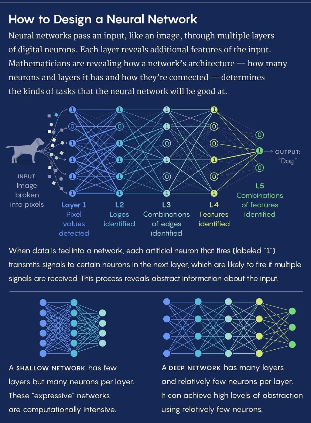 بناء الأساس لنظرية عامة عن الشبكات العصبونية