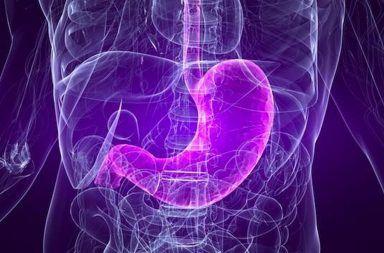 حقن خرز صغيرة في شرايين المعدة من أجل إنقاص الوزن طريقة طبية جديدة لإنقاص الوزن علاج البدانة شرايين المعدة العلاج الحمية الغذائية
