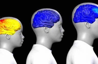كيف يتغير الدماغ عند البلوغ ؟