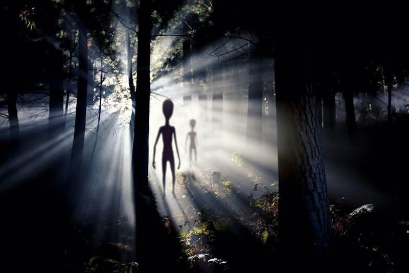 هل تعيش بيننا مخلوقات أخرى غير مرئية - إيجاد تعريف للحياة - الحياة الفضائية قد تتخذ أشكالًا عديدة يصعب ملاحظتها - هل توجد كائنات فضائية