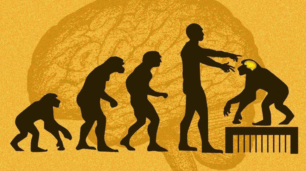 البحث عن كيفية تطور الذكاء البشري يثير بعض الأسئلة الأخلاقية