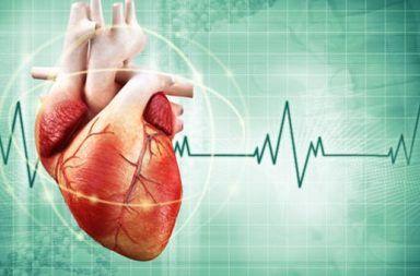 أسباب متلازمة بروغادا علاج متلازمة بروغادا الأسباب والأعراض والتشخيص والعلاج الإشارات الكهربائية ضمن العضلة القلبية القلب