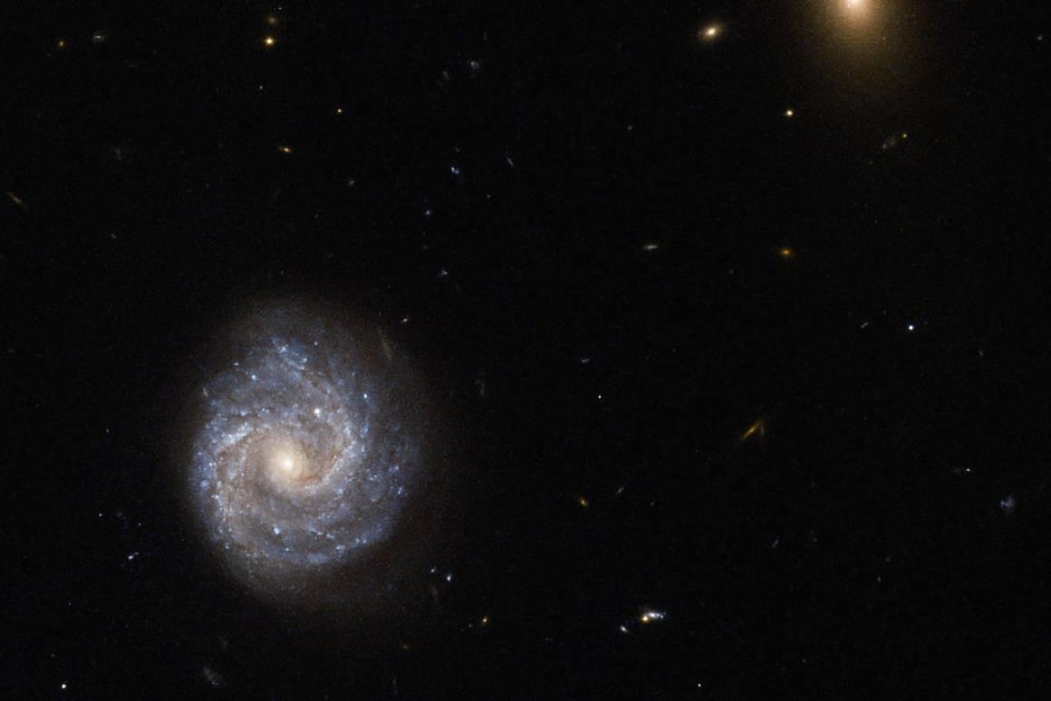 نجوم RS Puppis، من ألمع النجوم المرئية في مجرتنا، وهي من نجوم Cepheid variable التي رصدها تليسكوب هابل، ويستخدمها علماء الفيزياء الفلكية لاحتساب معدل تسارع الكون