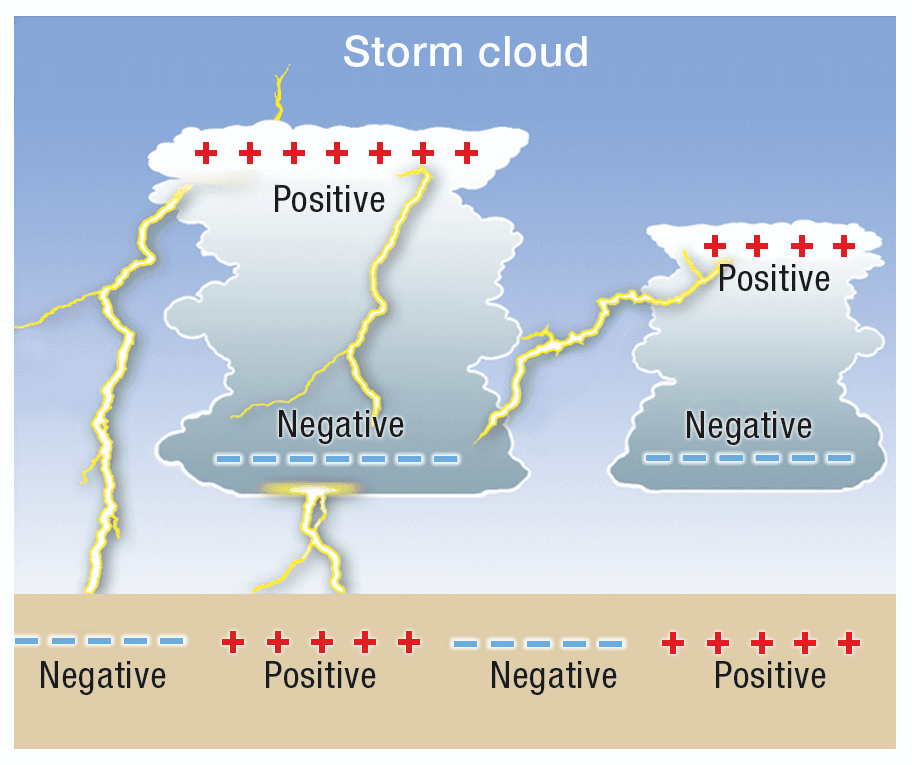 Pictured Thunder and lightning process : Lightning occurs when there are enough positive and negative charges in the thunderstorm clouds that cause discharge.