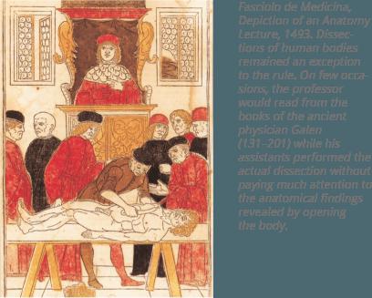 شرح الصورة: تصوير محاضرة حول التشريح ، ١٤٩٣.