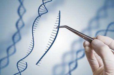 الجينات - ما هو الجين