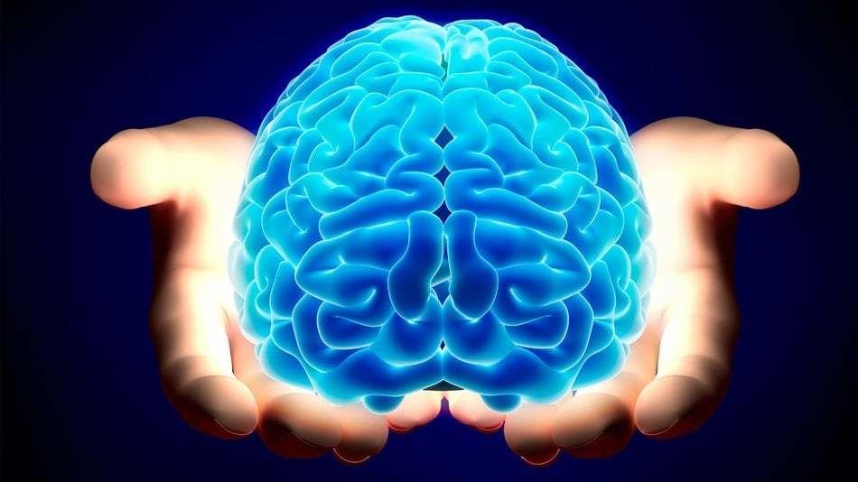 هل تحسن ألعاب الدماغ من قدرته ومستوى ذكائه؟