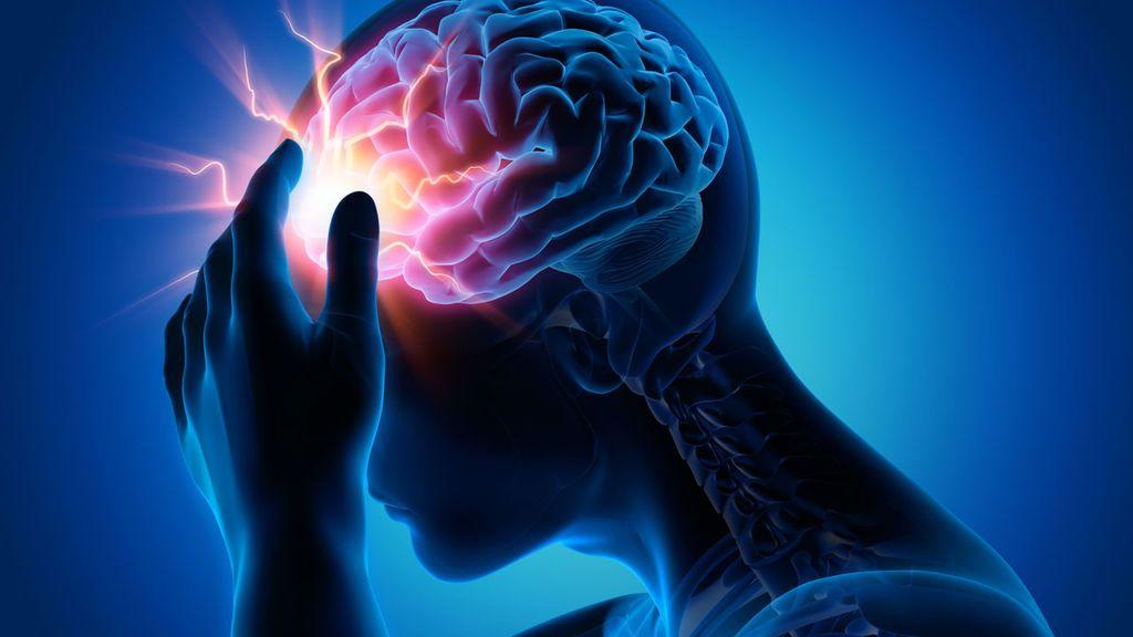 السكتة الدماغية الدماغ المخ الأوعية الدموية الدم