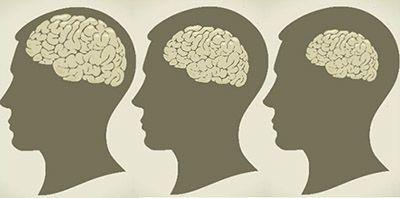 هل ينكمش الدماغ بمرور العمر هل يتضاءل حجم الدماغ مع مرور الزمن الشيخوخة الخرف الإدراك الوظائف المتعلقة بالإدراك ضمور الدماغ
