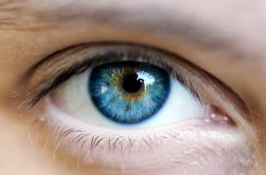 brown-blue-eye