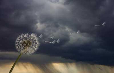 هل هناك ما يُسمى هدوء ما قبل العاصفة