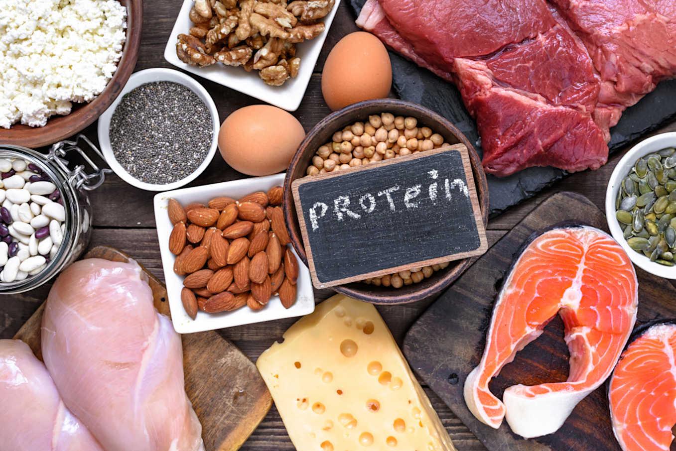 هل يزيد النظام الغذائي عالي البروتين خطر النوبات القلبية؟ - اتباع نظام غذائي غني بالبروتين لفقدان الوزن وبناء كتلة عضلية - اللويحات الشريانية