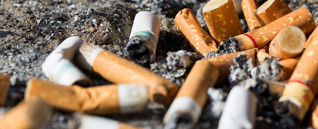 من منفضة السجائر إلى الخلطات الأسفلتية، هل تنتهي مشكلة أعقاب السجائر البيئية؟