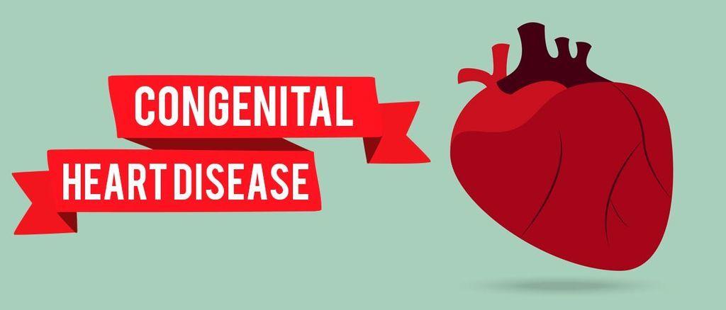 عيب الحاجز الأذيني: الأسباب والأعراض والتشخيص والعلاج