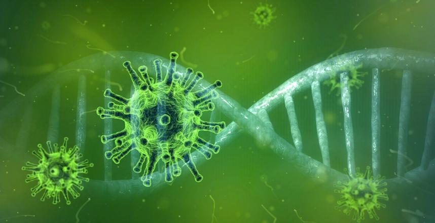 مقارنة بين فيروس كورونا الجديد وفيروس الإنفلونزا: أيهما أخطر؟ - ما هو الفرق بين فيروس الأنفلونزا وفيروس الكورونا الجديد- الرشح