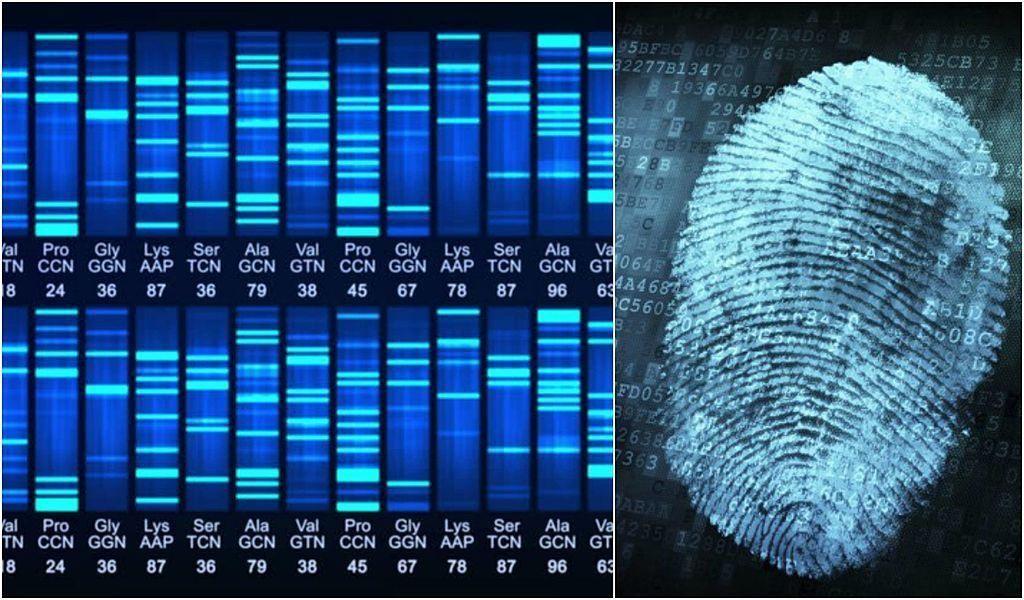 هذه الابتكارات التسعة ستخبرك لأي مدى قد تصل عبقرية البشر الاختراعات العظيمة التي تثبت عبقرية البشر بصمة الحمض النووي المستخدمة في حل الجرائم