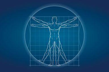 ما هي الميكانيكا البيولوجية الأنظمة البيولوجية الديناميكا العضلية الهيكلية الفيزياء الهندسة البيولوجيا الطب الأطراف الصناعية