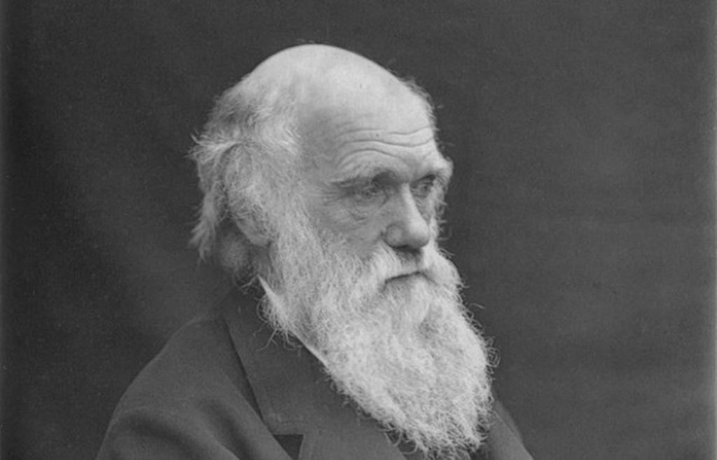 تشارلز داروين: سيرته الذاتية وحياته وأشهر أقوال تشارلز داروين