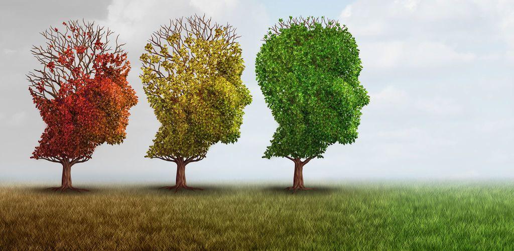 الخرف ومرض ألزهايمر وتأثير كل منهما على الدماغ والقدرات العقلية الفرق بين الخرف والزهايمر تدني القدرات العقلية مع العمر الوظائف الدماغية