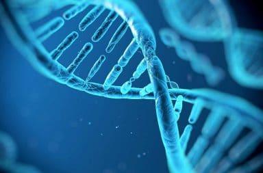 الطفرات الأنسجة الخلايا السرطان