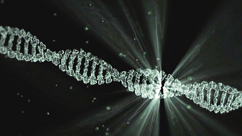 ضرر الحمض النوويّ النّاتج عن علاج السرطان