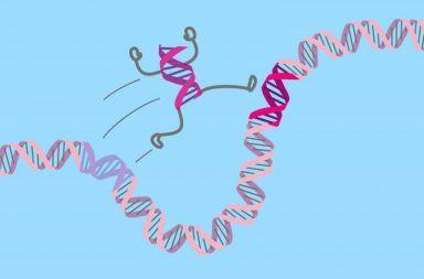 زيادة هامة في معدل حدوث السرطان عند الأطفال وهذه هي الأسباب شيخوخة الخلايا ضعف الجهاز المناعي تضرر الحمض النووي مع التقدم بالعمر