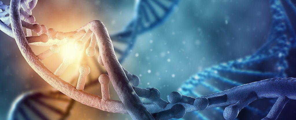 هل تؤثر تجاربك على حمضك النووي؟  الجواب هو نعم، خاصة اثناء الطفولة