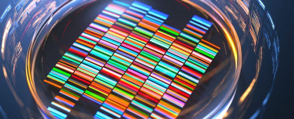 حل واحدة من أعظم ألغاز عملية تضاعف الحمض النووي