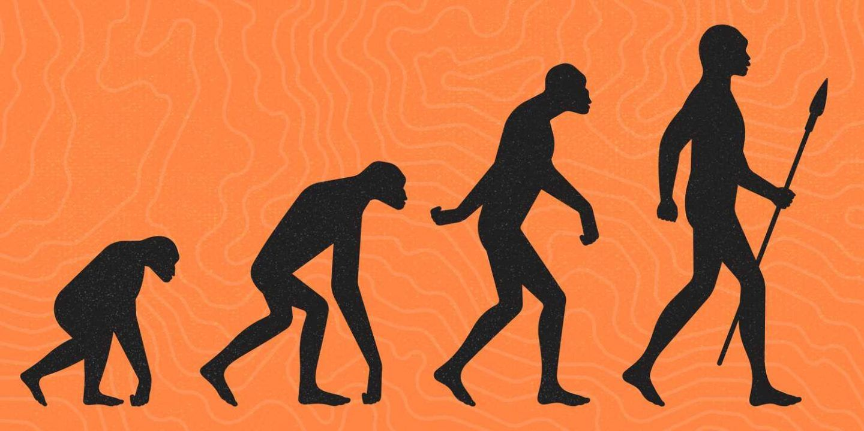 اوضح 8 دلائل على التطور في جسد الإنسان