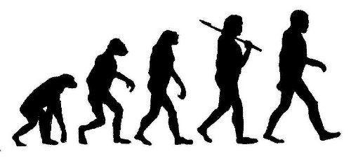 التطور الملحوظ أثناء الحدوث - الجزء الثاني (عصافير دارون)