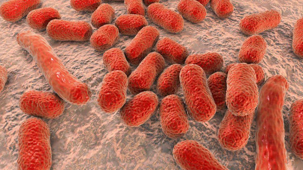 كيف لتفريش أسنانك أن يساعد في مقاومة الجراثيم الفائقة للمضادات الحيوية