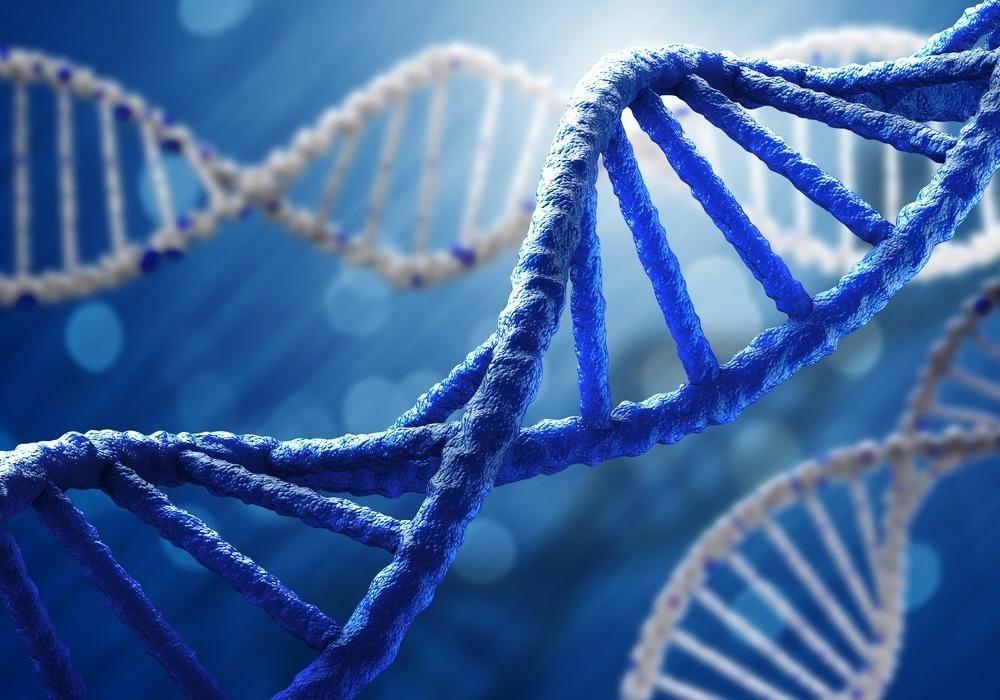 حل لغز تنظيم الحمض النووي الريبوزي الذي بقي لفترة طويلة