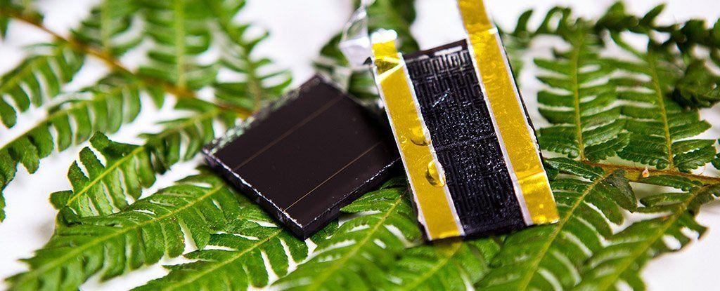 هل نحن أمام ثورة ستضاعفة قدرة تخزين الطاقة الشمسية لآلاف المرات؟