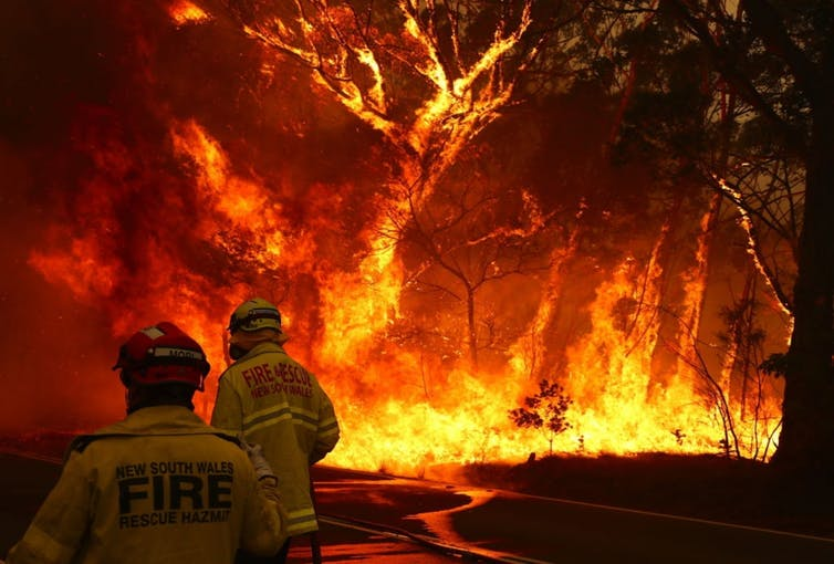 خمس أزمات متزايدة تقلق العلماء وتهدد الأجيال القادمة - حرائق الغابات المندلعة في كافة أنحاء أستراليا هذا الصيف - أبحاث الاستدامة البيئية